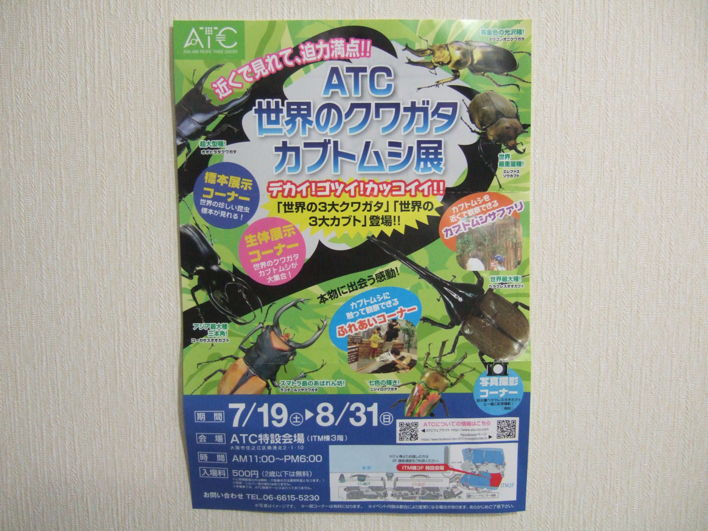 ATC世界のクワガタカブトムシ展2014